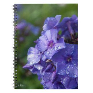 Carnet fleur violet avec la rosée du matin