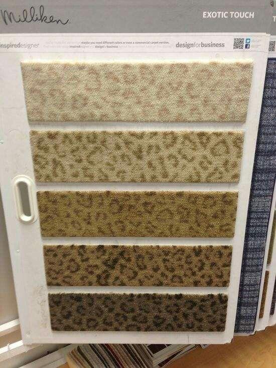 Best 20 Leopard Carpet Ideas On Pinterest Leopard Rug