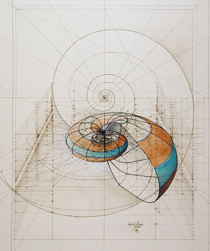 Rafael Araujo's hand-drawn Golden Ratio illustrations are a beautiful f…