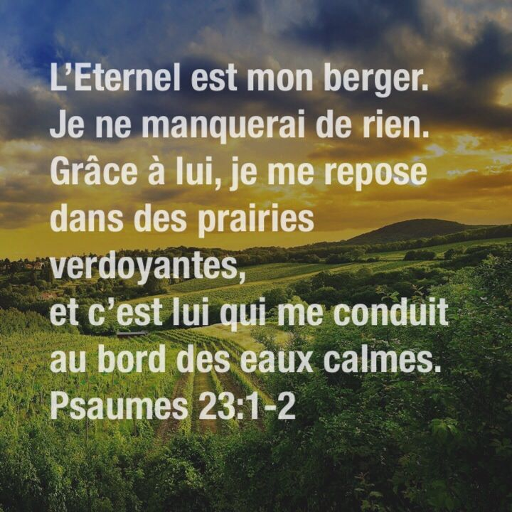 Psaume 23:1-2                                                                                                                                                                                 Plus