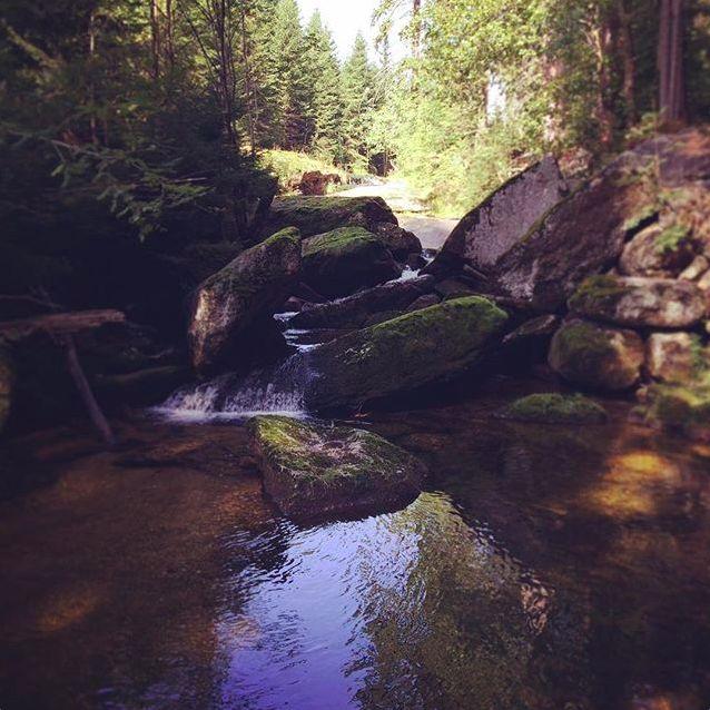 Jizerský potok