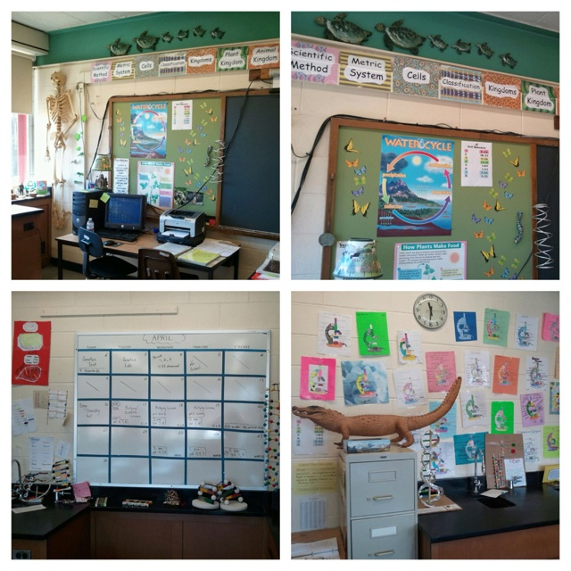 Biology Classroom Decorations ~ Best ideas about biology classroom decorations on