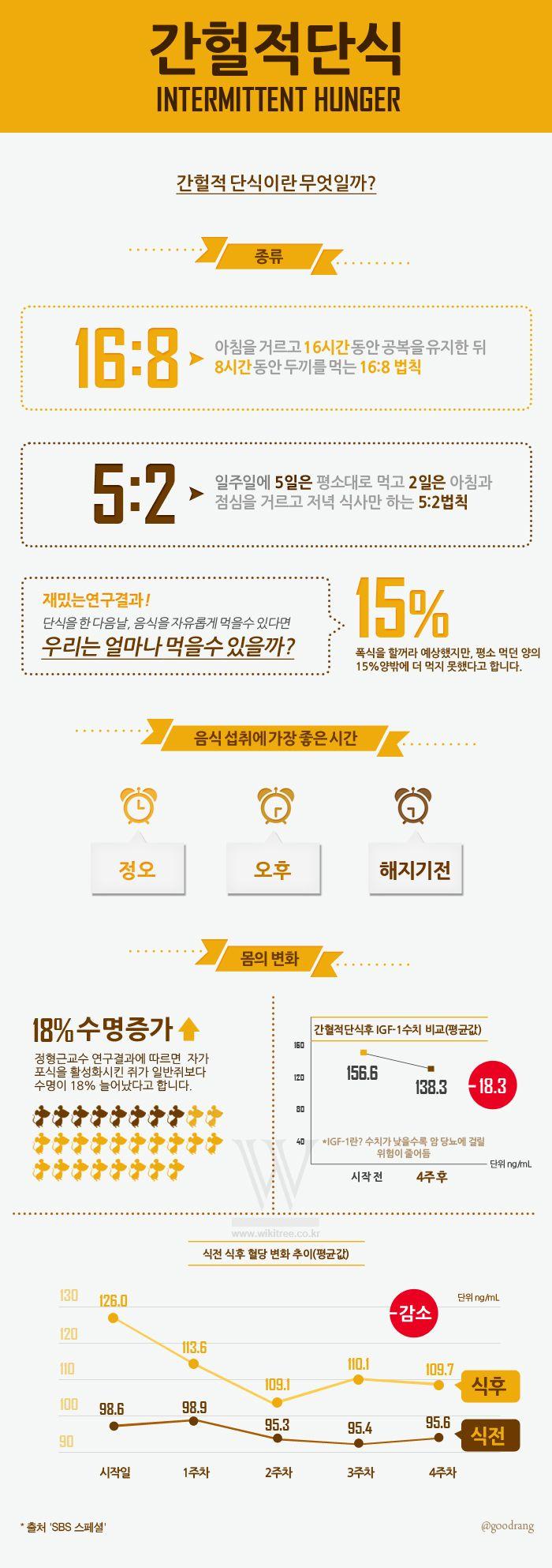 [Infographic] 간헐적 단식에 관한 인포그래픽