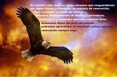 ... LA RENOVACIÓN DEL ÁGUILA. https://www.youtube.com/watch?v=D2UJTwwd5kc