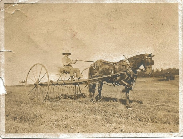 1000 Images About Horse Drawn Farm Equipment On Pinterest