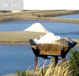 Les Saveurs de l'Île de Noirmoutier - la fleur de sel