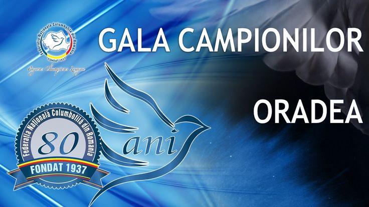 Gala Campionilor Columbofili - Ianuarie 2017