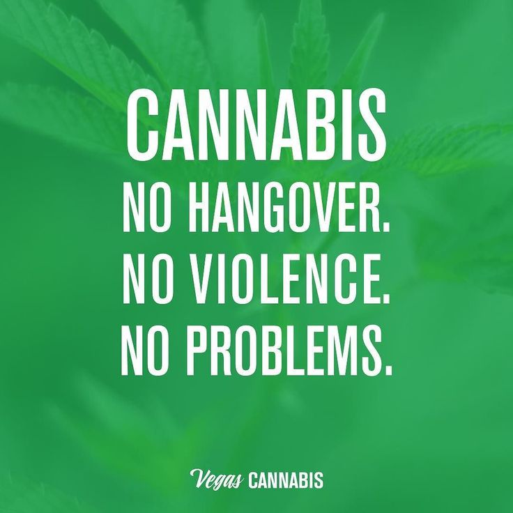 Last Saturday Of The Year Quotes: 63 Best Stoner 420 Quotes Images On Pinterest