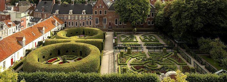 Open tuinen in stad en provincie Groningen tijdens de Tuin en kunst tiendaagse in juni. Een jaarlijks terug kerend evenement die het 3e jaar in gaat.