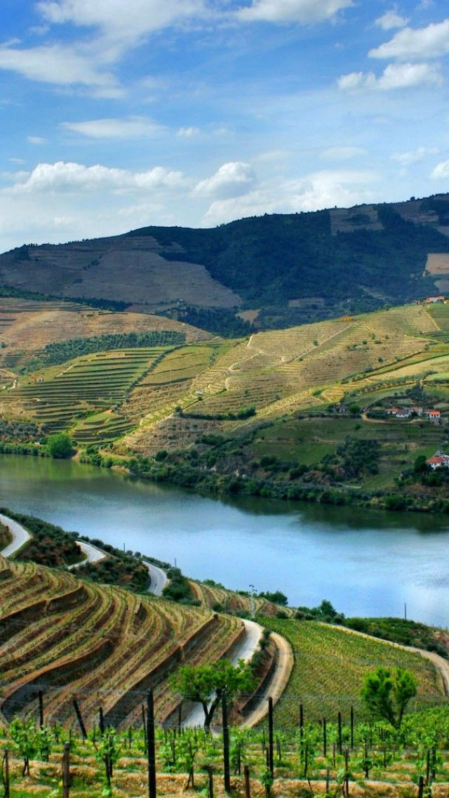 Douro valley, wine country in Portugal