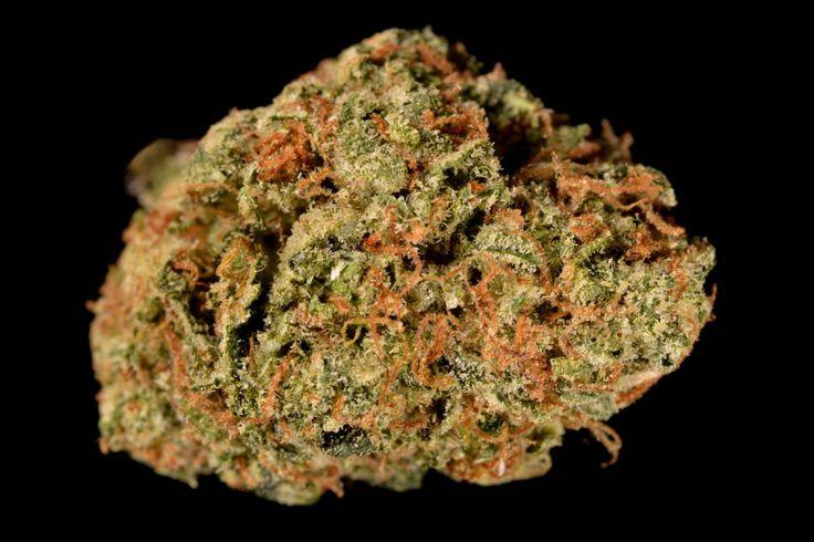 Marijuana review: Skywalker OG (Strain Theory)