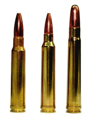 The .300 Winchester Magnum (also known as .300 Win Mag or 300WM) (7.62×67mm) is a popular, belted, bottlenecked magnum rifle cartridge that was introduced by Winchester Repeating Arms Company in 1963 as a member of the family of Winchester Magnum cartridges... used on 420lb Blk bear