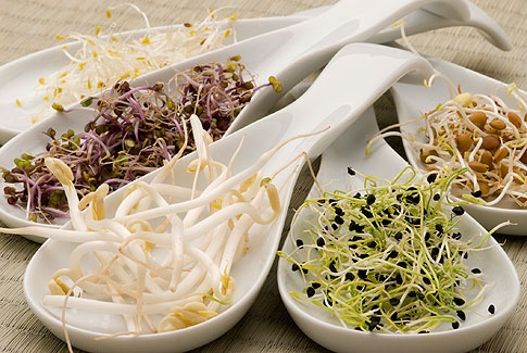 Naklíčená semínka mají blahodárné účinky; thinkstock
