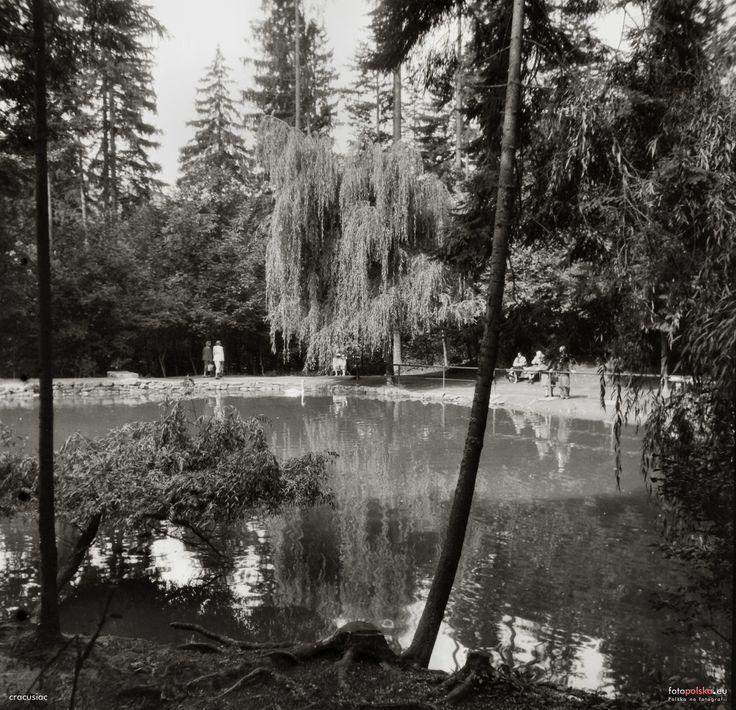 Łabędzi Staw, Krynica Zdrój, 1957