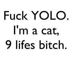 Lol, I still love Yolo