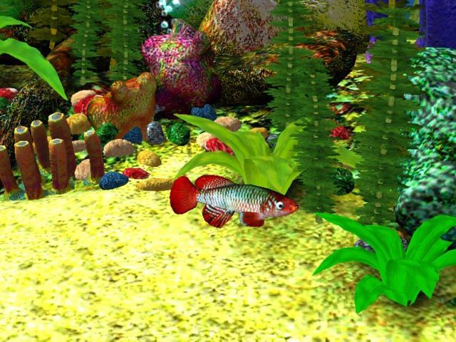3D Desktop That Moves and sounds alive | Free 3D Aquarium Screensaver Download - Free 3D Aqua Screensaver