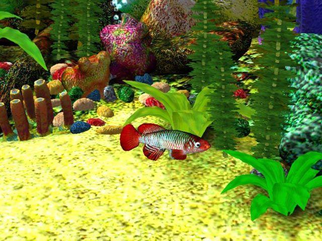 3D Desktop That Moves and sounds alive   Free 3D Aquarium Screensaver Download - Free 3D Aqua Screensaver