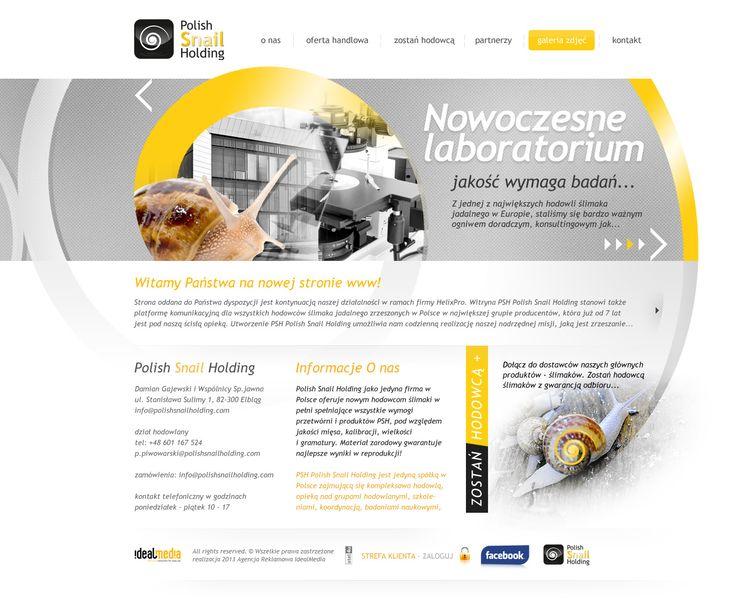 WebDesign 2014 - grafika forum dla firmy Polish Snile Holding
