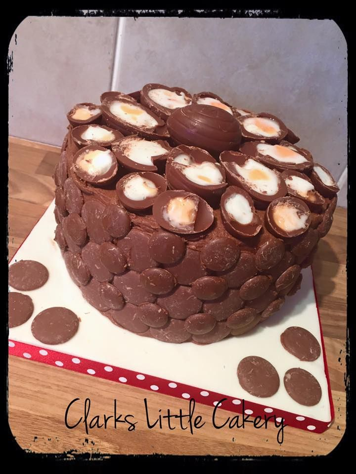 Best Tins To Use For Chocholate Hedgehog Cake