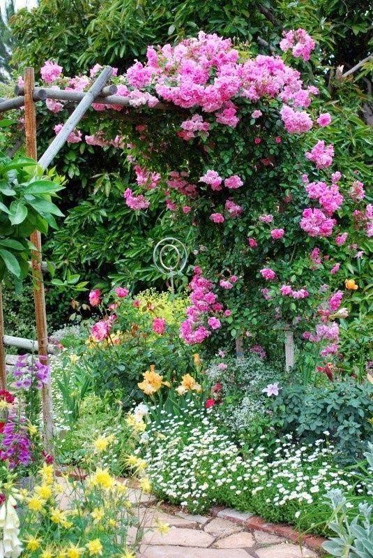 ༺ Garden gate to admire ༻
