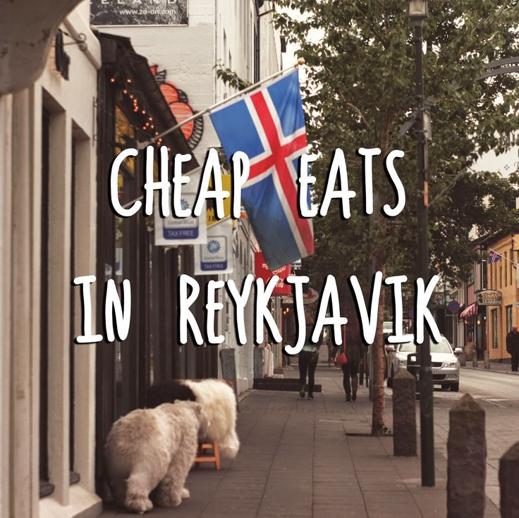 Cheap Eats in Reykjavik, Iceland |The Art of Cheap   more travel tips on theartofcheaptrav...  more