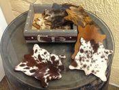 ADORABLE WESTERN DECOR MINI COWHIDE COASTERS SET 8 STORAGE BOX miniature cowhide unique wedding gift idea hair on cowhide