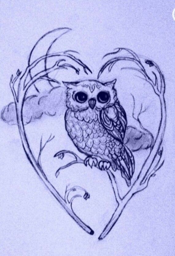 Cute owl love drawing - photo#9