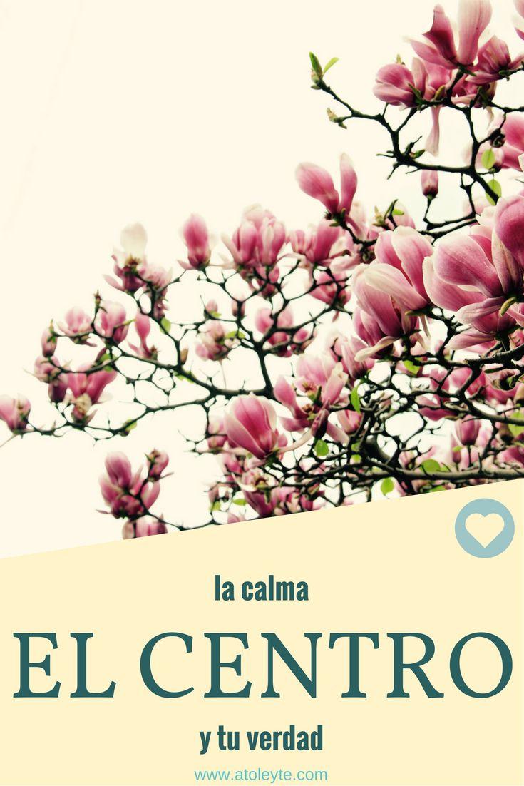 La calma, el centro y tu verdad, vive en armonía