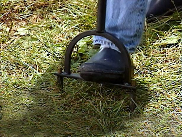 Time to start preparing for winter, eek! Here's tips for winter lawn prep from @DIY Network