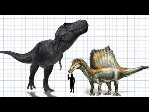Paleontology News: The Size Limit of Tyrannosaurs
