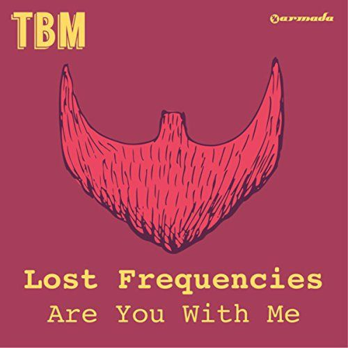 Lost Frequencies Are You With Me Pop Pinterest