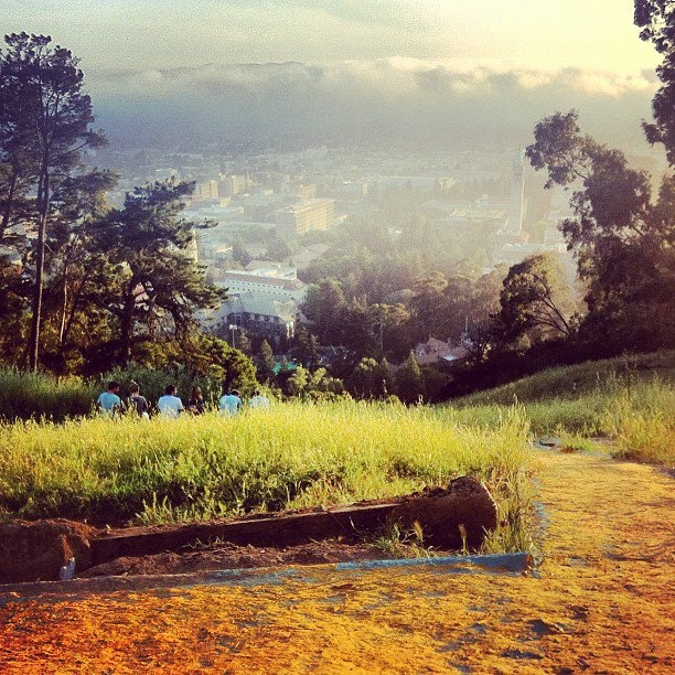 #4: Our annual Big C hike #ThingsHannahWillMissAbout #Berkeley
