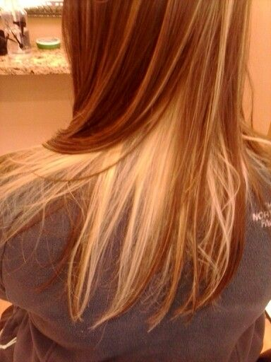 Blonde underneath brown Hair done by Katie Smi at Mariposa studio