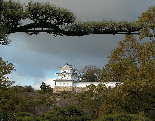 Akashi Castle, Akashi, Hyogo Prefecture, Japan by cocoi_m, via Flickr