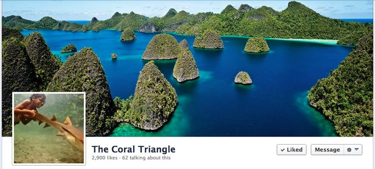 Facebook fan page of the Coral Triangle