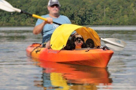 Dog Paddling Sunshine Shade For Kayaks Canoes And Sups Yellow Homemade Accessories In 2020 Kayaking With Dogs Kayaking Canoe And Kayak