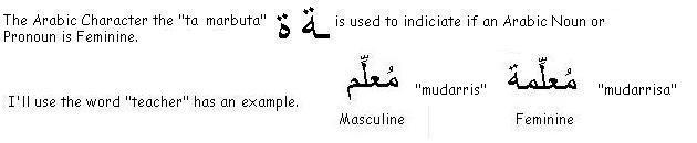 Example of what makes an Arabic Noun or Pronoun, Masculine or Feminine - Learn Arabic