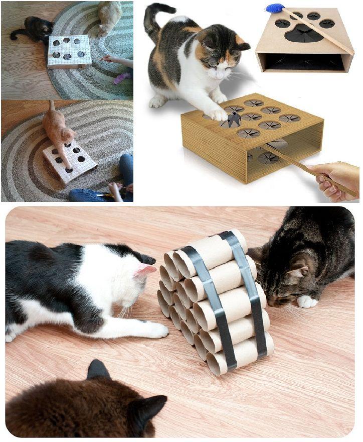 Giochi per gatti: 13 idee per realizzarli con il fai-da-te