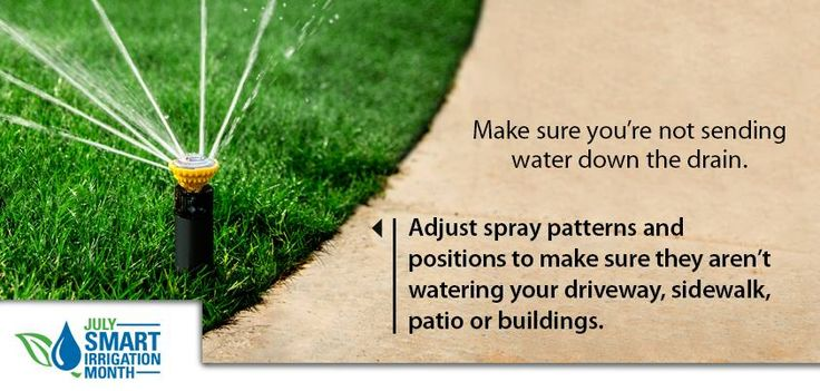 Landscape Watering Tip: Make sure you're not sending water down the drain. Adjust spray patterns and positions to make sure they aren't watering your driveway, sidewalk, patio or buildings. #sprinkler #landscape #irrigation #valve #timer #lawn #plant #grass #garden #yard #backyard #water #diy #rainbird (via http://store.rainbird.com)