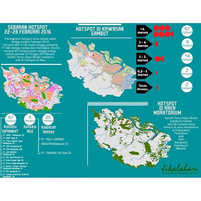 @jikalahari mencatat sebaran hotspot yang ada di Riau periode 22 hingga 28 Februari 2016 adalah 91 titik panas. Data ini diperoleh dari satelit Terra-Aqua Modis dengan melihat sebaran hotspot pada daerah konsesi IUPHHK, HGU dan Konservasi. Selain itu Jikalahari juga memetakan bahwa hotspot-hotspot tersebut ada yang muncul di kawasan gambut dan mineral.  #hotspot #riau #hotspotdiriau #arealkonsesi #iuphhk #hgu #konservasi #gambut #mineral #APRIL #APP #PTRAPP #PTAraraAbadi #infografis…