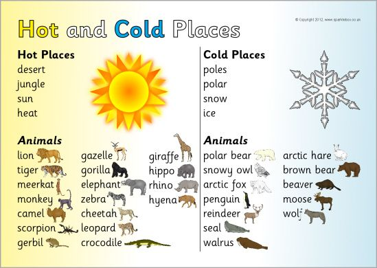 Hot And Cold Places Word Mat Sb10048 Sparklebox