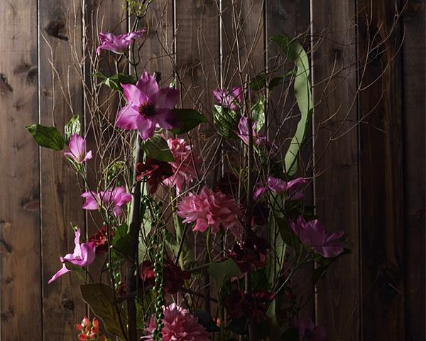 Alyssum Florist's nippers