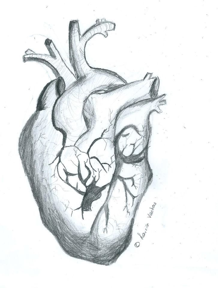 39 best heart draw images on pinterest