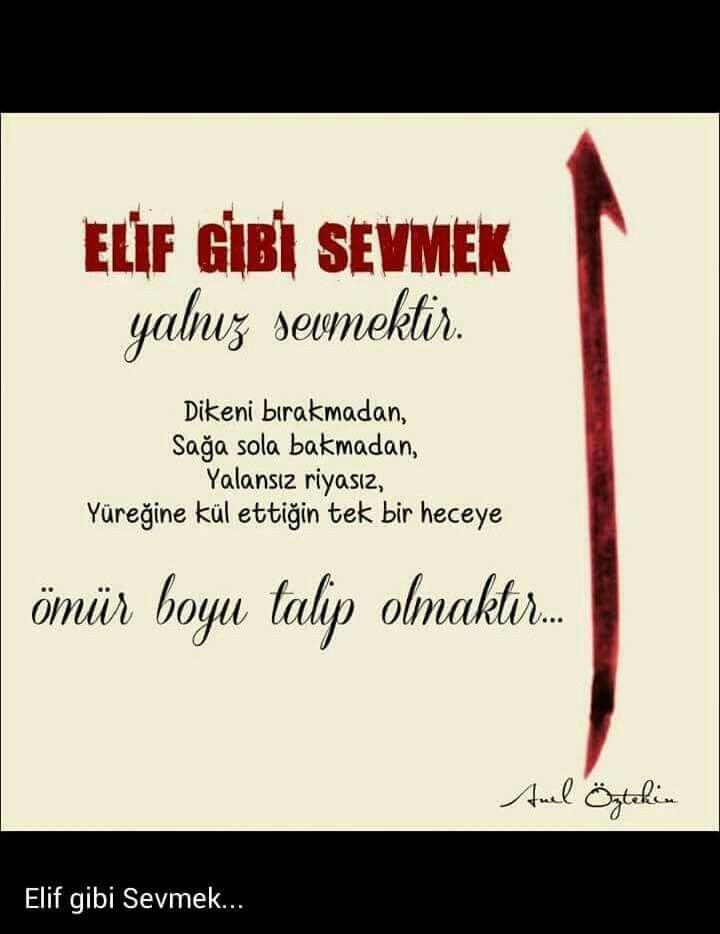 Elif gibi sevmek...