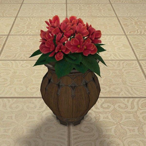 Potted Azalea Azaleas Pot Pot Image