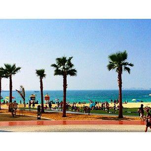The Beach Dubai JBR Apartments
