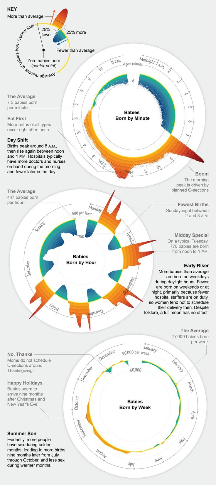 119 best visualization images on pinterest graphics info lw 7 good example data visualization of human birth patterns pooptronica