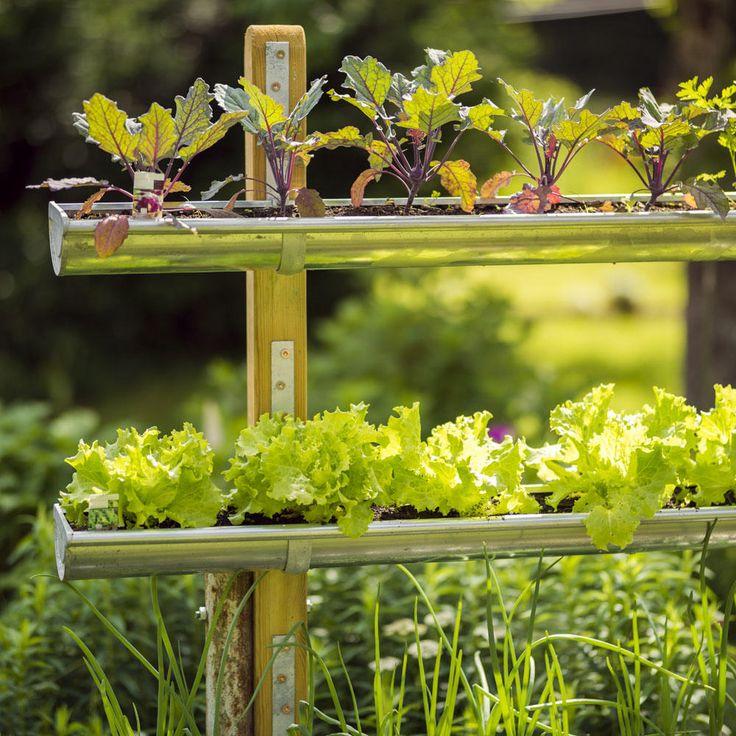 Wie wäre es mit einem vertikalen Garten für den Balkon? In diesem Gartentrend ist …   – Vertikale Gärten