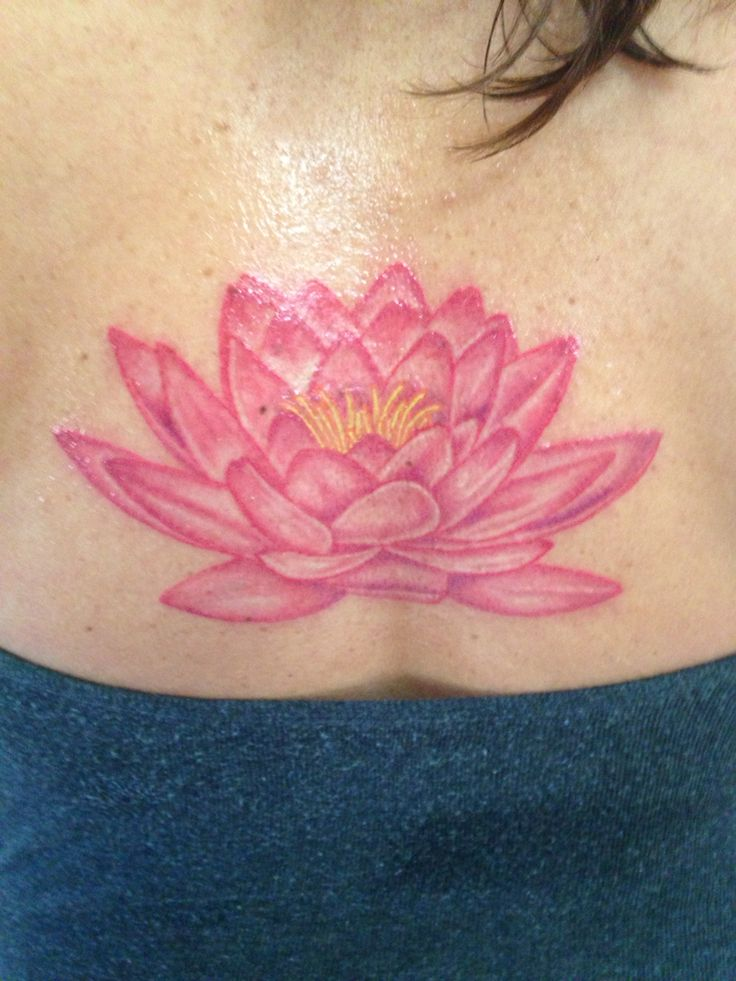 1000 Ideas About Water Lily Tattoos On Pinterest Lotus