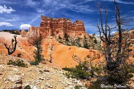 Bryce Canyon aux Etats-Unis. Il s'agit d'un des parcs nationaux les plus visités du pays pour ses paysages somptueux de roches rouge et ocre à perte de vue. La proximité d'autres parcs protégés comme les Arches permet de faire un beau circuit pour découvrir l'ouest des USA.